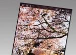 Japan Display ra màn hình 543 ppi cho smartphone